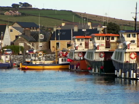 ms, ireland, dingle bay with moored boats - placca di montaggio fissa video stock e b–roll