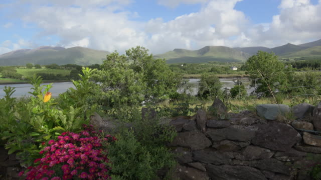 ireland dingle peninsula cloghane view of lake and hills with flowers - stone wall stock videos and b-roll footage