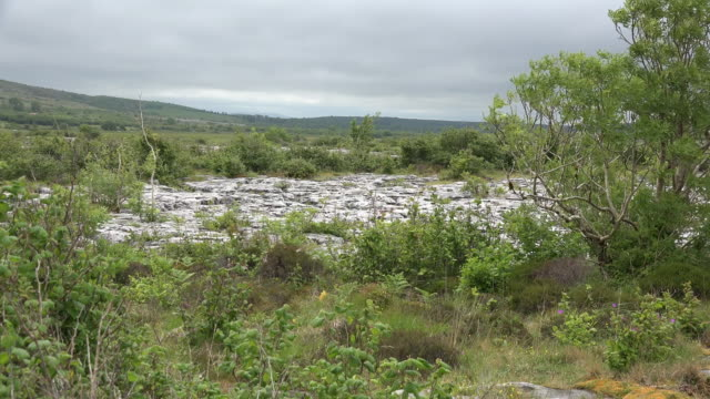 Ireland the Burren barren limestone