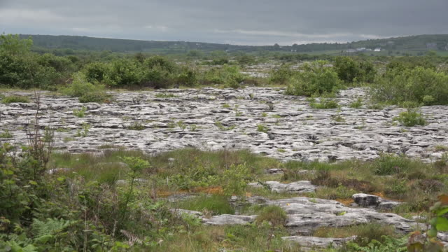 Ireland the Burren limestone karst