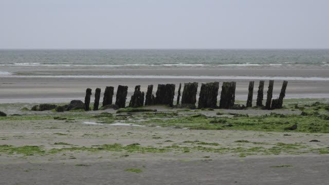 ireland west cork estuary with broken pilings - estuary stock videos & royalty-free footage