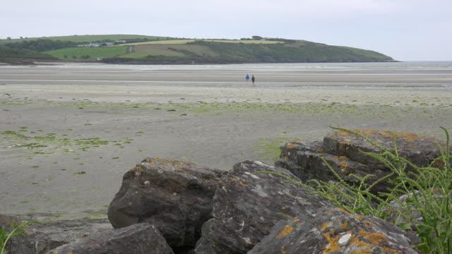 ireland west cork estuary with people walking - estuary stock videos & royalty-free footage