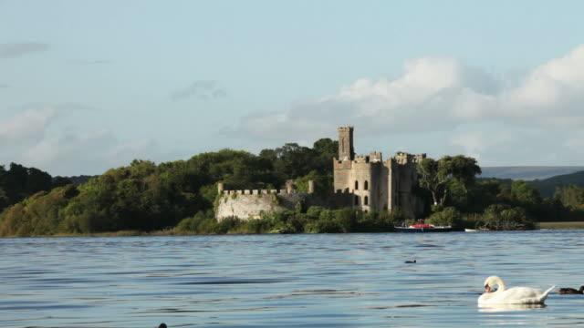 irish castle - old westbury stock videos and b-roll footage