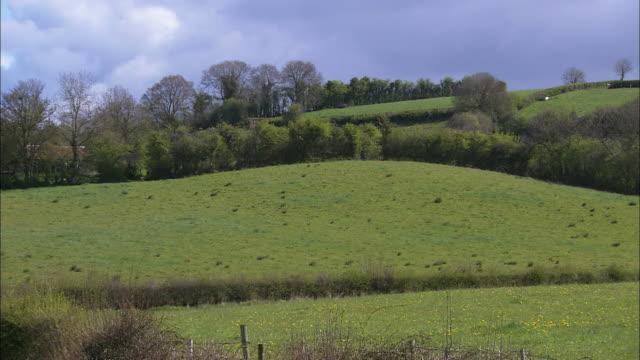 Irish countryside; fields and hills, Northern Ireland