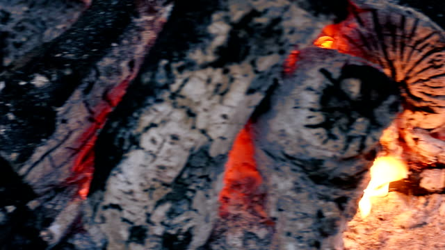 iron cast cauldron boiling a stew over open log fire - boy scout stock videos and b-roll footage