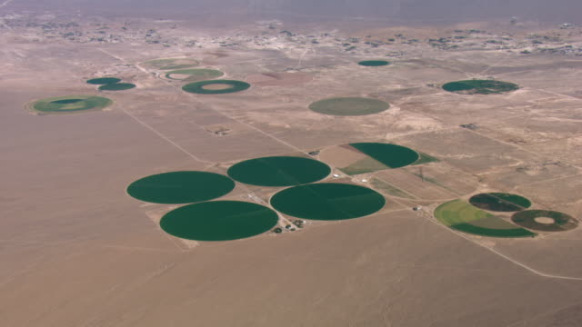 irrigated pivot crops thrive in the mojave desert. - bewässerungsanlage stock-videos und b-roll-filmmaterial