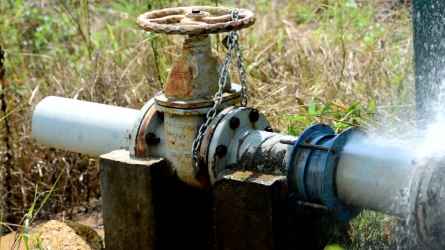 Irrigation community