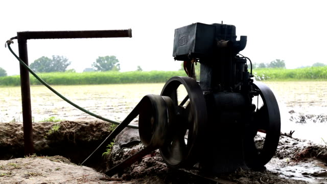 irrigation during summer season - water pump stock videos & royalty-free footage