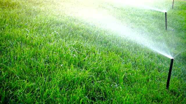 Irrigation equipment on a lawn