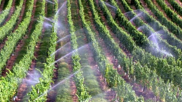 irrigation equipment sprinkler system