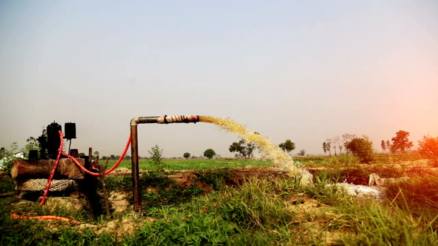 irrigation in the green field - monsoon stock videos and b-roll footage