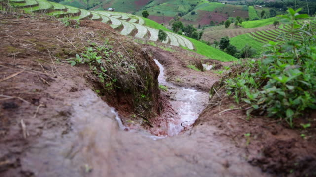 irrigation on mountain - refreshment stock videos & royalty-free footage