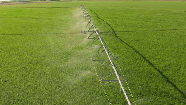 ms aerial td zi irrigation pivot spraying water on field in rice county / kansas, united states - sprinkler system stock videos & royalty-free footage