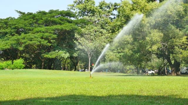 vídeos y material grabado en eventos de stock de de aspersión riego césped verde en el jardín - equipos de riego