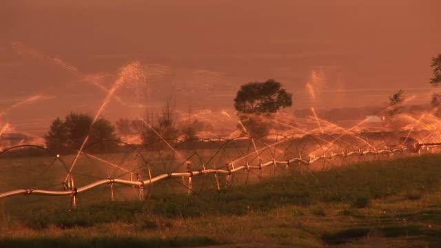 vidéos et rushes de ms, irrigation sprinklers in field at sunset, idaho, usa - procédé croisé