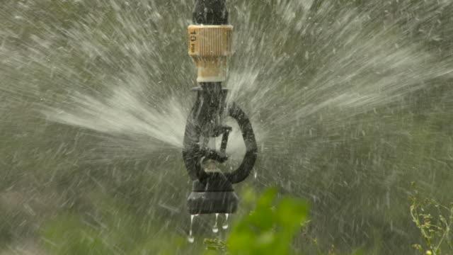 stockvideo's en b-roll-footage met slomo irrigation system waters crop, senegal - verfrissing