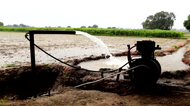 irrigation though tube well - water pump stock videos & royalty-free footage