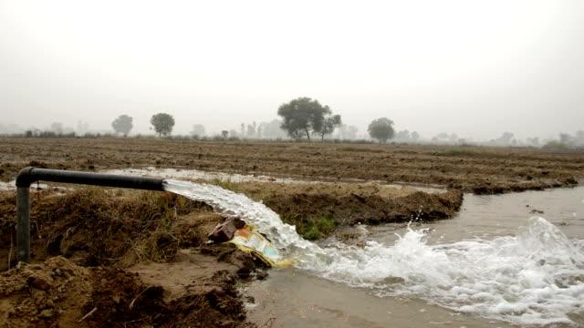 stockvideo's en b-roll-footage met irrigation through tube well - irrigatiesysteem