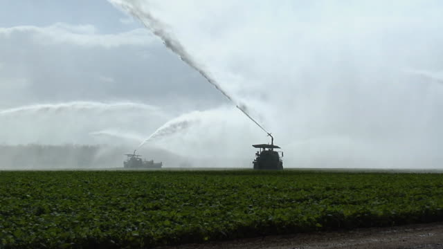 zo, ws, irrigation trucks spraying water on field, homestead, florida, usa - florida usa stock videos and b-roll footage