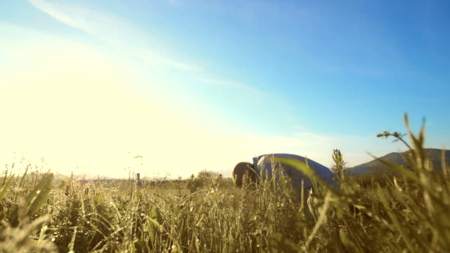 hd: islamic man prostrating in the grass - kufi stock videos & royalty-free footage