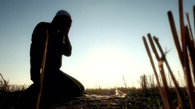 islamic man prostrating in the grass - islam stock videos & royalty-free footage