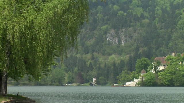 ws, pan, island on lake bled with church of the assumption of mary surrounded with trees, gorenjska, slovenia - lago di bled video stock e b–roll