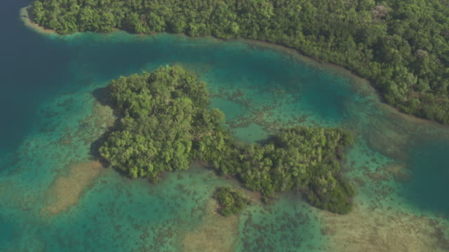Island rainforest and coral reef, Solomon Islands
