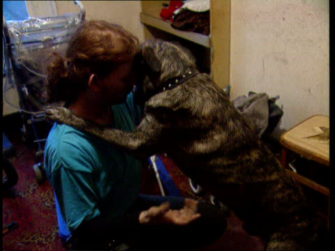 civil action itn lib england london lms michael fitch with dog in hallway tcms ditto c4n january 16th supered cms michael fitch intvw sot i was... - ärr bildbanksvideor och videomaterial från bakom kulisserna