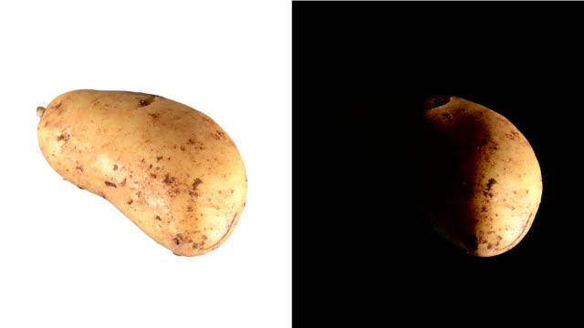 ALPHA: Isolated potato