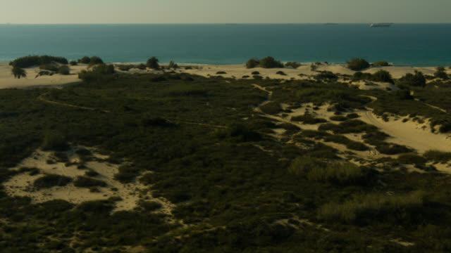 Israel sandy shore  line