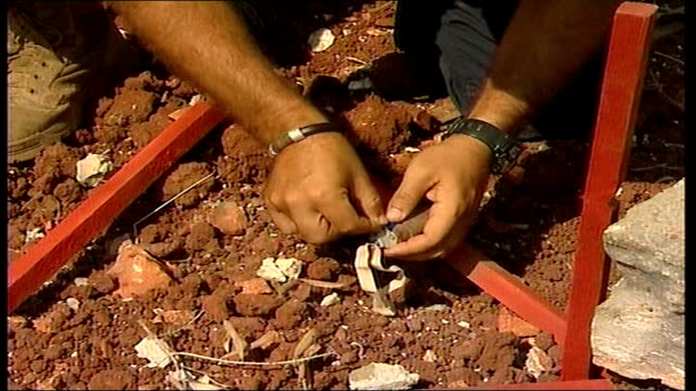 israeli cluster bombs still killing and maiming in lebanon brown stake in ground marking position of bomblet in wasteland general view of stakes... - dismantling stock videos and b-roll footage