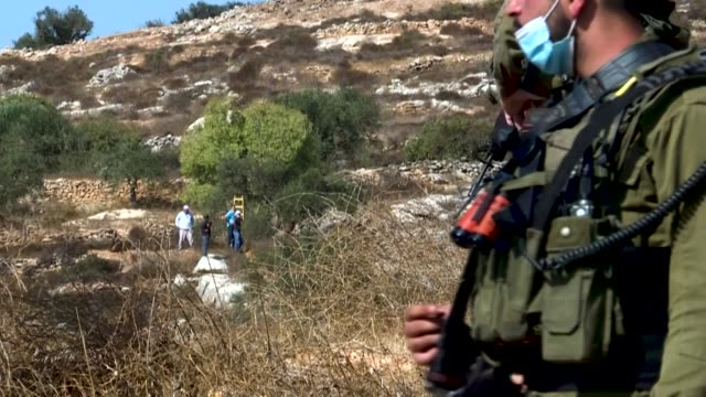 israeli soldiers and settlers prevent palestinian farmers from crossing to harvest olives in the town of burqah near the city of ramallah - army soldier stock videos & royalty-free footage