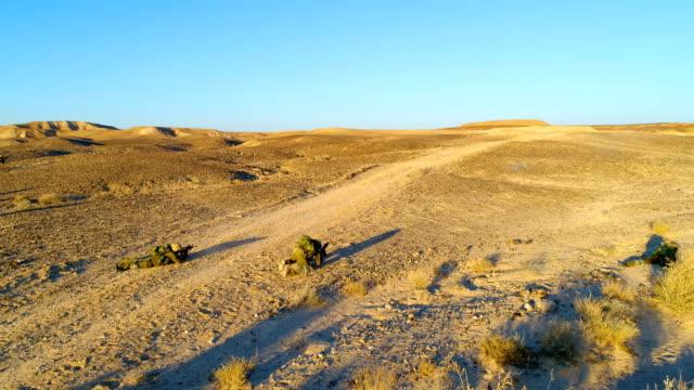 Israeli soldiers training in the Negev desert, Israel