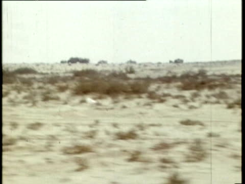 vídeos de stock, filmes e b-roll de israeli tanks, half tracks personnel carriers and civilian truck convoy along through desert, desert views, empty buses parked on roadside / israeli... - 1973
