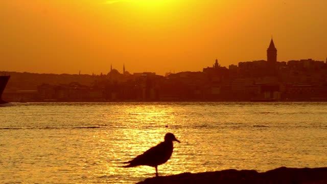 イスタンブールボスフォラス海峡 - スルタンアフメト・モスク点の映像素材/bロール