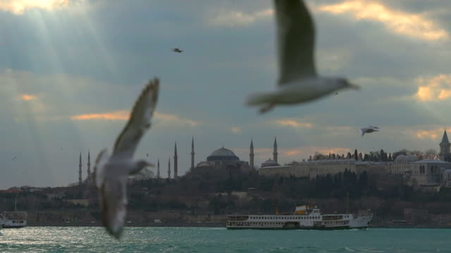 istanbul bosphorus - istanbul stock videos and b-roll footage