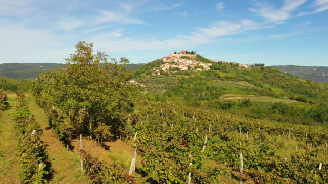 aerial istrian town on the hill - motovun - remote location video stock e b–roll