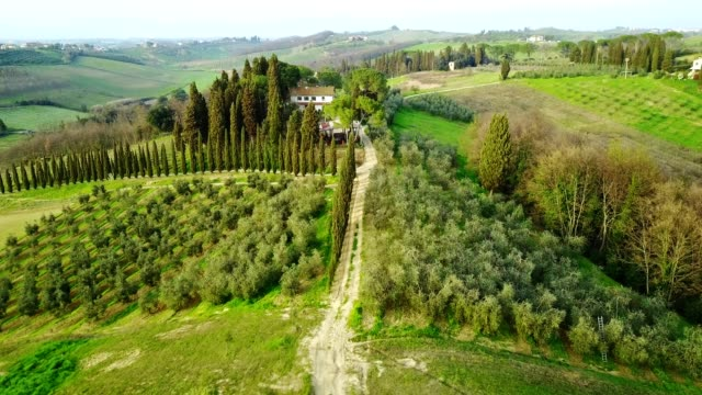 italian countryside with vineyard - siena italy stock videos and b-roll footage