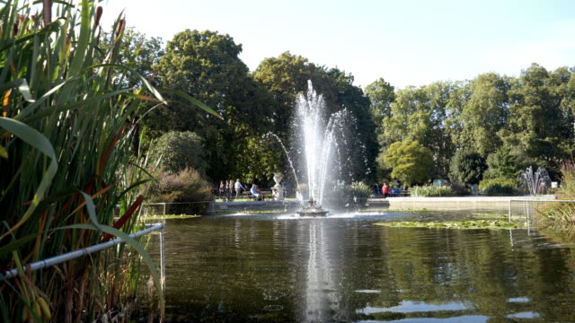 italian gardens in london kensington gardens - fountain stock videos & royalty-free footage
