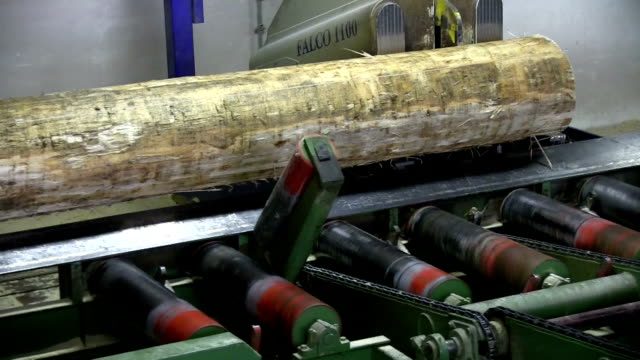 italy, cavalese, cut logs in a sawmill - timber yard stock videos & royalty-free footage