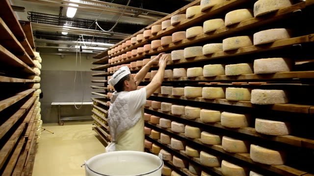 italy, cavalese, dairy, goat cheese ripened - シェーブルチーズ点の映像素材/bロール