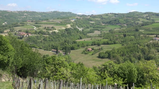 italy langhe landscape in hills - piedmont italy stock videos & royalty-free footage
