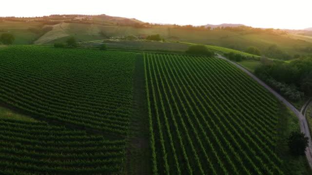 vídeos y material grabado en eventos de stock de italia - vista aérea del paisaje de las marcas - cultura mediterránea