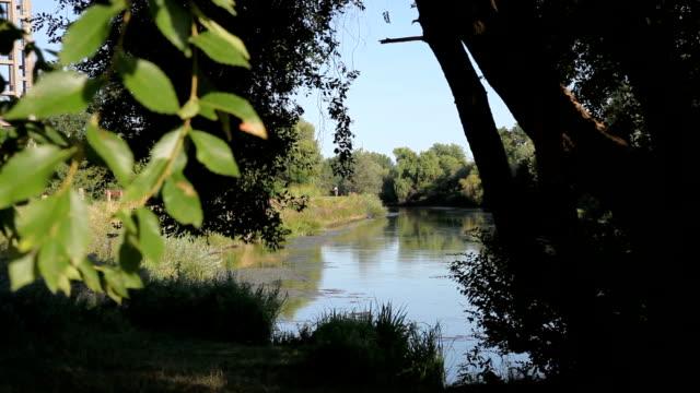 Italy, Veneto, Treviso, along the Sile river