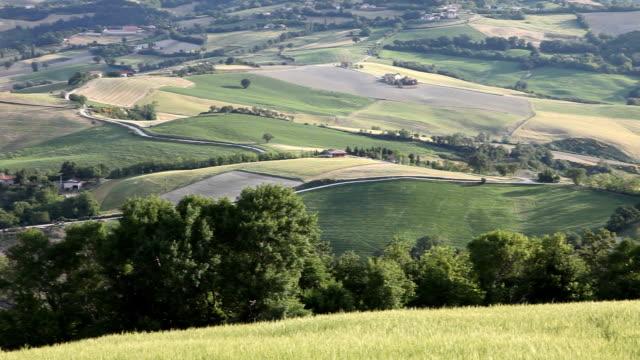 Italy, wheat fields
