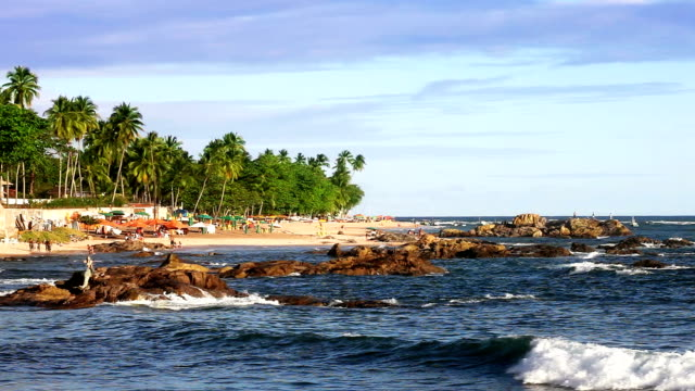 itapua beach in salvador - bahia state stock videos and b-roll footage