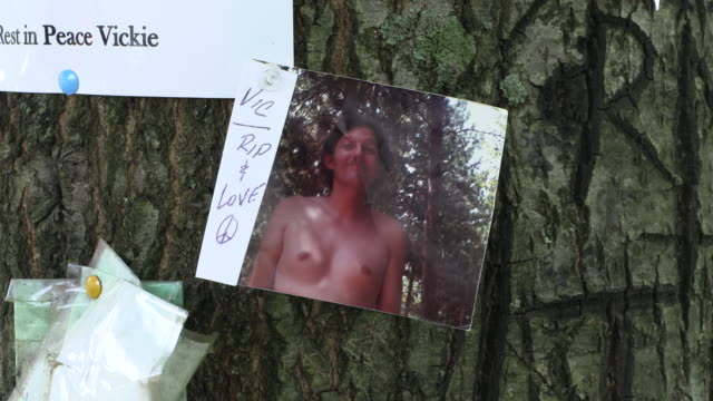 items are left in remembrance at the peace tree at the woodstock memorial near the site of the original stage after the 50th anniversary of woodstock... - weekend activities stock videos & royalty-free footage