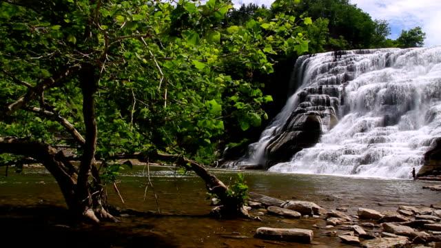 ithaca falls fisherman - cayuga stock videos & royalty-free footage