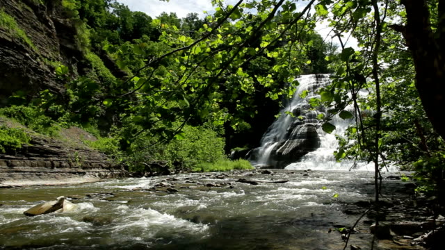 ithaca falls trees hd - cayuga stock videos & royalty-free footage