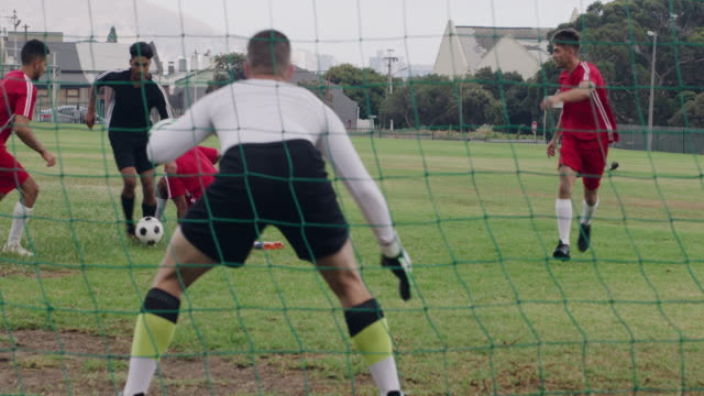 it's no wonder they made him goalie! - catching stock videos & royalty-free footage